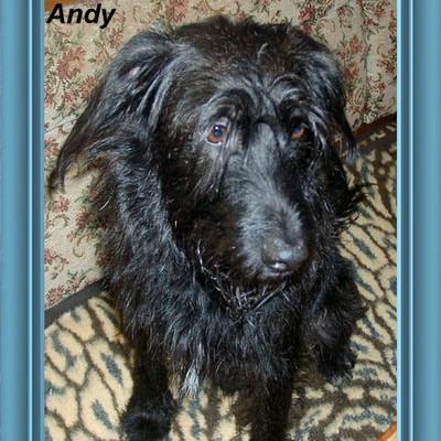 Unser kerniger Andy- er hat die richtigen Menschen gefunden!