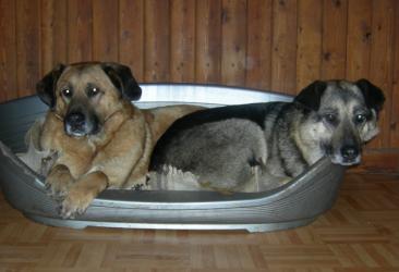 Munja und Zoela
